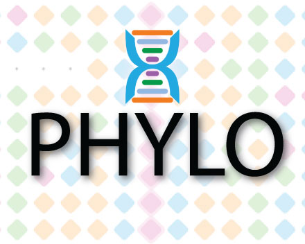 Phylo Puzzle Game